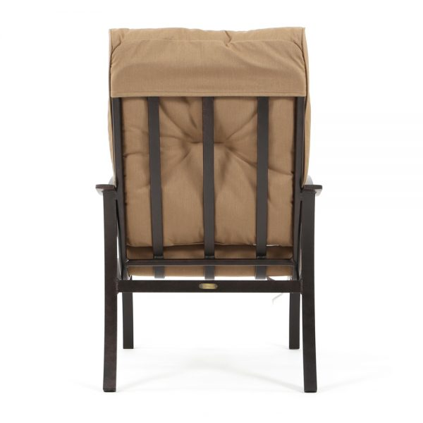 Albany backyard dining chair back view